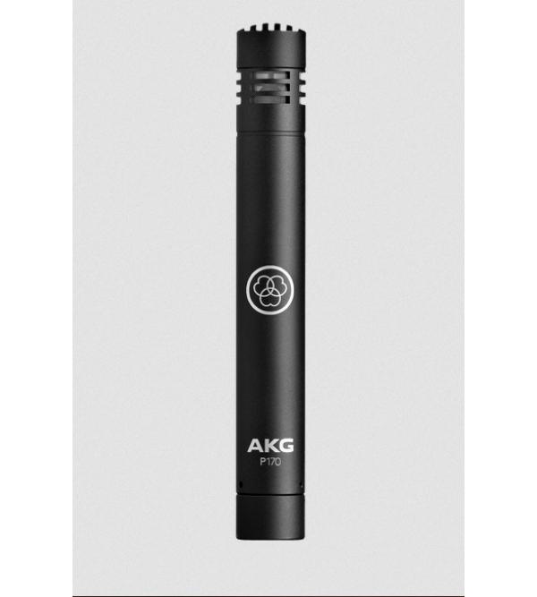 Инструментальный микрофон AKG P170